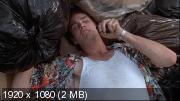 Эйс Вентура: Розыск домашних животных / Ace Ventura: Pet Detective (1994) HDTVRip 1080p / DVD9