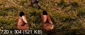 http//i1.fastpic.ru/thumb/2010/0207/b1/4b678c731e7dd09cf672e6d3cdaf6cb1.jpeg